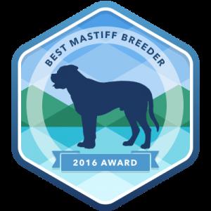 mastiff award
